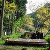 A Picnic Area.<br /> In the Nishiyama range, Takatsuki city, Osaka Prefecture.