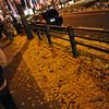 Walking along Midosuji Street.<br /> During the 2012 Osaka Hikari Renaissance.