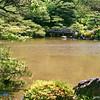 Across a Small Pond
