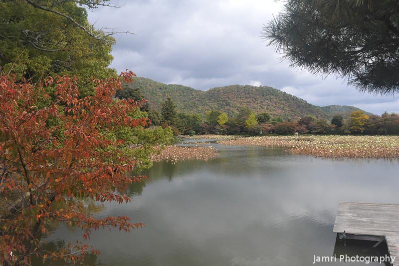 A View of Osawa-no-ike