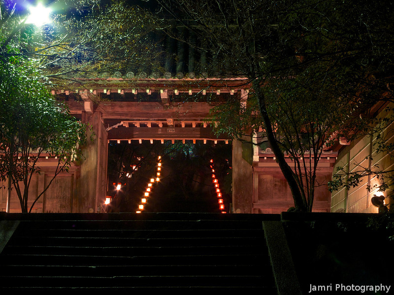 The Gate of Horin-ji (Straightened)