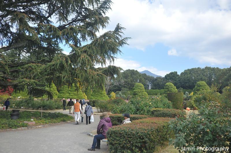 At the Botanical Garderns