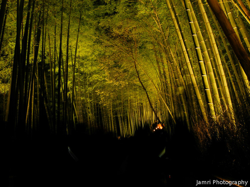 Into the Bamboo Passage.<br /> During the 2012 Arashiyama Hanatouro.