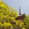 A Parting Shot of the Pagoda.<br /> This concludes the photos from this visit Mimuroto-ji (a Buddhist Temple), in Uji city, Kyoto-fu, Japan.