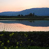 Sky, Mountains, Rice Fields and Nanohana.<br /> Omi Imazu, Shiga-ken, Japan.