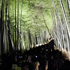 The Crowds at the Arashiyama Hanatouro.<br /> It was difficult setting up the tripod and getting shots due to the crowds, actually it's the most crowded it's been at any of the Hanatouro's I've been too. This shot is a high iso shot made in between low iso tripod shots. I actually had the camera on the tripod for this shot but folded up and held above my head. I used the IR remote and the screen facing downwards so I could look up and see it to compose.