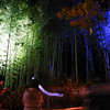 At the Arashiyama Hanatouro.<br /> Just a couple of the many 1000s of people there that evening.