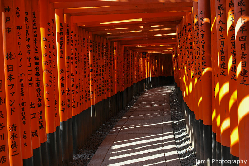 Sunlight the the Torii