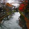 Autumn in Omi Hachiman.