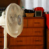 "The White Fan.<br /> In our lounge room not long before we packed it away for the winter.<br /> Thank you to every who comment on my ""Boat and Momiji"" photo back in October. I've been so busy with a visitor from Australia and also finishing off a lot of paper work and tax stuff for my businesses, that I didn't post anything to Smugmug for over a month."