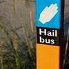 Hail Bus
