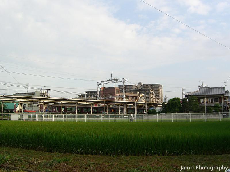 Rice Field, Hankyu Station and Sky