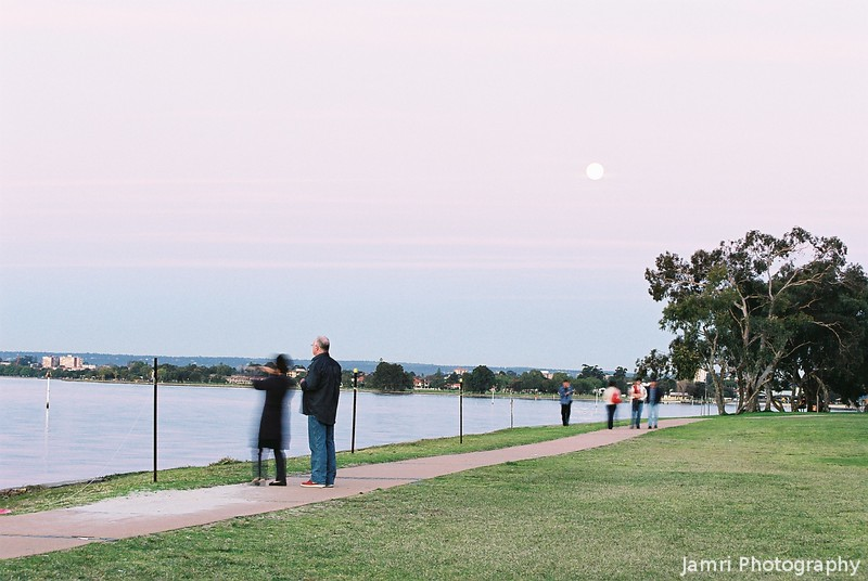 By the Swan River