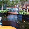 Kio Carp Pond