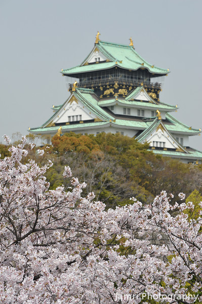 A Portrait of Osaka Castle.