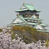 A Portrait of Osaka Castle.