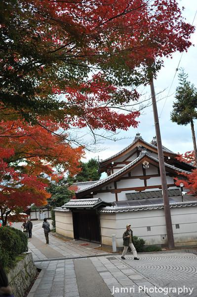 Big autumn foliage and a small temple.