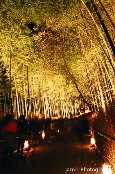 Along the bamboo corridor.<br /> During the Arashiyama Hanatouro 2010.<br /> Note: Film Shot, Nikon F80 + 24f/2.8mm + Fujicolor PRO400