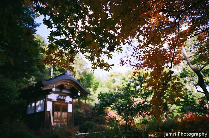 A Small Building at the Side of the Temple Complex.<br /> At Jojakko-ji (Jojakko Temple), Arashiyama, Kyoto.<br /> Note: Film Shot, Nikon F80 + 24f/2.8mm + Fujicolor Reala ACE 100.