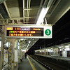 Waiting for the First Train of the Day.<br /> On my way to Kansai Airport to meet my sister.