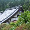 Hydrangeas and a Temple Roof.<br /> At Youkoku-ji in Nagaokakyo.