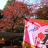 Takoyaki Stand and Autumn Colour.<br /> At Yasaka-jinja, Gion, Kyoto.