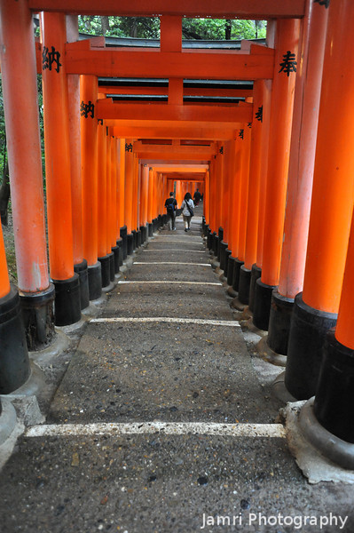 On a Downward Slope.<br /> Alone the Torii line pathways of Fushimi Inari-taisha.