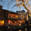 A Sakura and some Restaurants.<br /> Along the Shirakawa, in Gion, Kyoto.