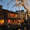 A Sakura and some Restaurants.<br /> Along the Shirakawa, in Gion, Kyoto.
