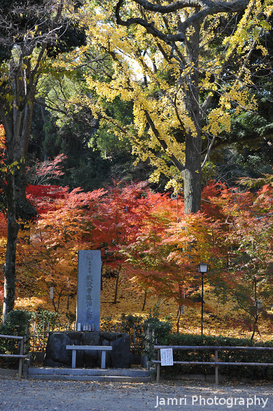 Covered in Autumn Colour.<br /> A little hill at Nagaoka Tenmangu Shrine, in Nagaokakyo.