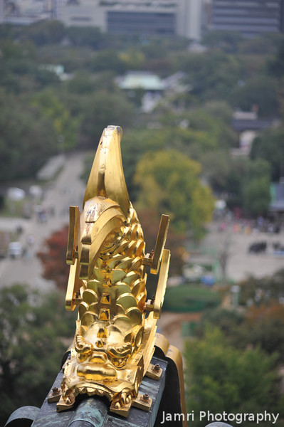 A Golden Dolphin and the Castle Grounds.<br /> At Osaka Castle. I don't know why these are called Dolphins, but that's what it said in the castle museum, even in Japanese. Maybe the original designer never go so close to see that dolphins don't have scales.