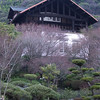 Country Retreat.<br /> A former country retreat of a wealthly Japanese man, has now become an expensive restaurant and museum.