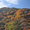 Patch work hill.<br /> As seen from Okochi Sanso, Arashiyama, Japan.