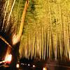 The tunnel of light.<br /> Note: Film Shot, Nikon F80 + 24f/2.8mm + Fujicolor PRO400