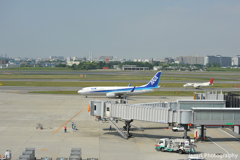 A larger ANA and smaller JAL plane.