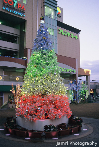 Christmas Tree in Nagaokakyo<br /> A photo of the Christmas Tree outside the local community centre in Nagaokakyo.<br /> (Note: Film Shot, Nikon F80 + Nikkor AF 35f/2D + Fujichrome Provia 400X film)