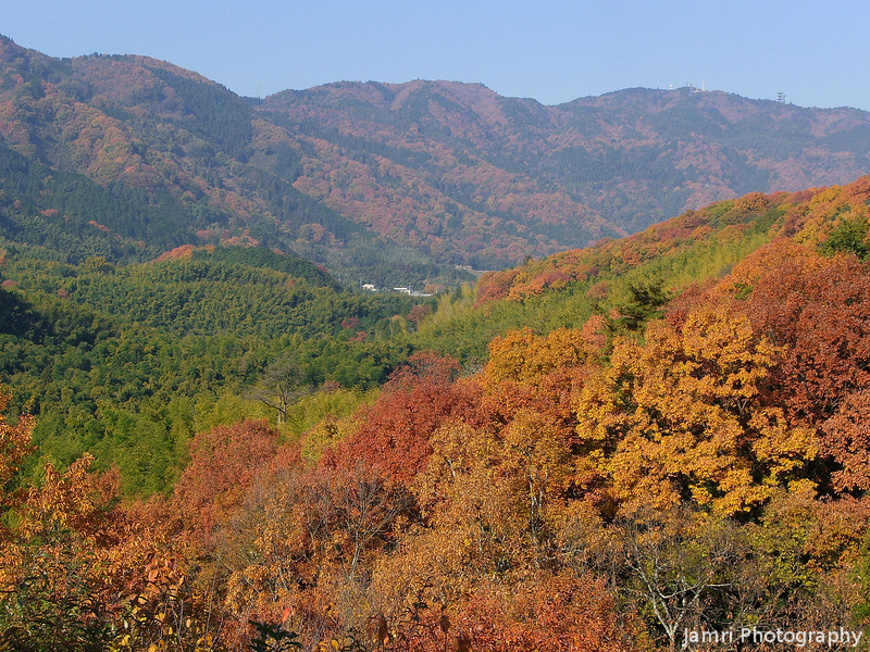 The Hills Ablaze<br /> The hills in Nagaokakyo ablaze with autumn colour. Taken while hiking.
