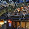 At a Traditional Restaurant.<br /> Along the Shirakawa, in Gion, Kyoto.