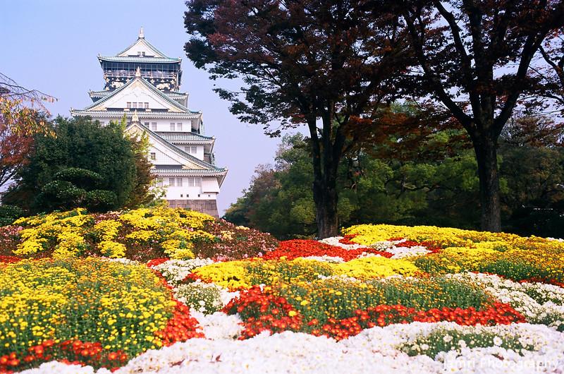 The Chrysanthemum Patch and Osaka Castle.<br /> Note Film Shot: Nikon F80 + 35f/2 Lens + Kodak Ektar 100