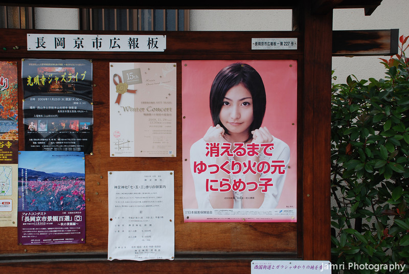 Fire Safety Advertisement.<br /> The poster with the young lady is promoting fire safety, I never would have guessed, but I was curious so I ask Ritsuko what it said. There are also ones of another young lady holding a smoke detector, but not this one...