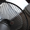Fan, another point of view.