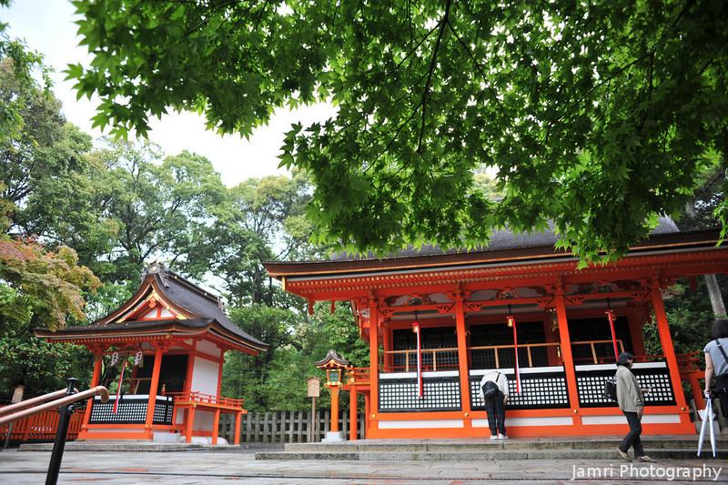 From Under a Mapple Tree.<br /> At Fushimi Inari-taisha (a Shinto Shrine) in Fushimi-ku, Kyoto.