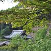 A view towards some temple buildings.<br /> At Mimuroto-ji (Mimuroto Temple) in Uji, Kyoto.