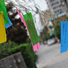 "Blowing in the wind. Wishes for the <A href=""http://en.wikipedia.org/wiki/Tanabata"">Tanabata Festival</A>"