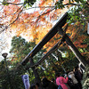 The Line at Nonomiya Shrine.<br /> In Arashiyama, Kyoto.