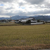Across a field.<br /> In the countryside of Ehime Prefecture.