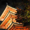 The Pagoda.<br /> At Kiyomizu-dera (Kiyomizu Temple).