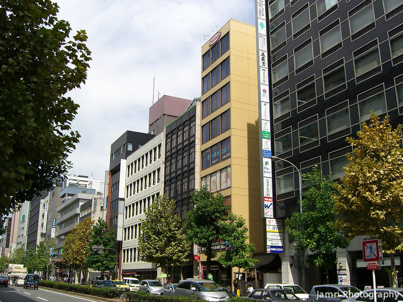 """Karasuma Street 2.<br /> Karasuma one of the main streets of the """"Businessy"""" part of Kyoto, reminded me of St Georges Tce in Perth."""