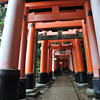 The Start of the Torii Tunnel.<br /> The thing Fushimi Inari-taisha is most famous for is it's Torii Tunnels. Here they are a bit more spaced out than in some of the other places in this Shrine Complex.