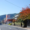Autumn Time<br /> A short walk from my house in Nagaokakyo